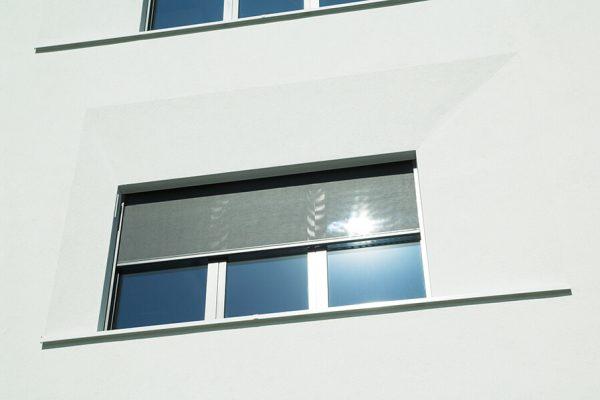 Zipscreens als Sonnenschutz bei Fensterbau Lieber in unserer Ausstellung in der Sindelfinger Str. 13 in 71032 Böblingen